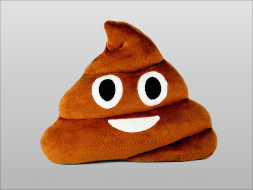 Image of   Emoji Smiley puder (Poop)